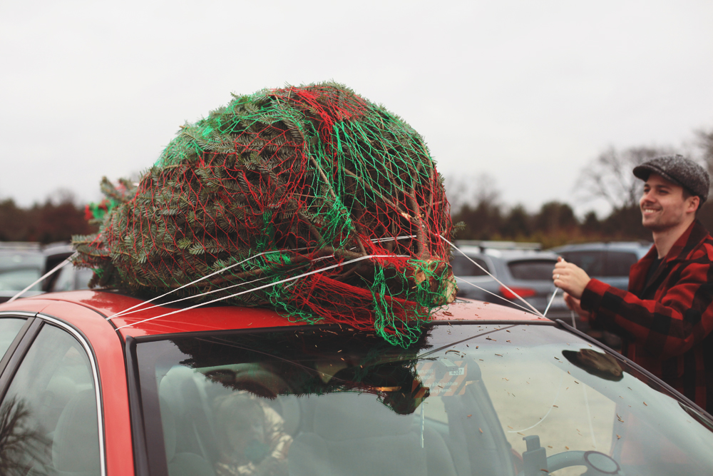 christmastree10
