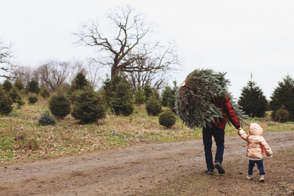 christmastree12
